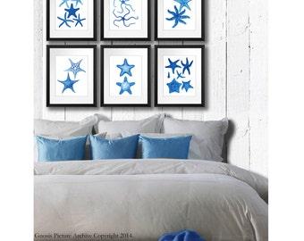 Starfish print, Starfish Wall Art, Starfish Print, Sea Creatures, Blue White Beach Decor Starfish Art set of 6, Bathroom Decor Gnosis 8x10