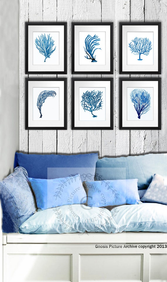 Sea Coral Decor wall art prints set of 6, Blue and white Sea Coral Print  Beach living room wall hanging art 8x10\