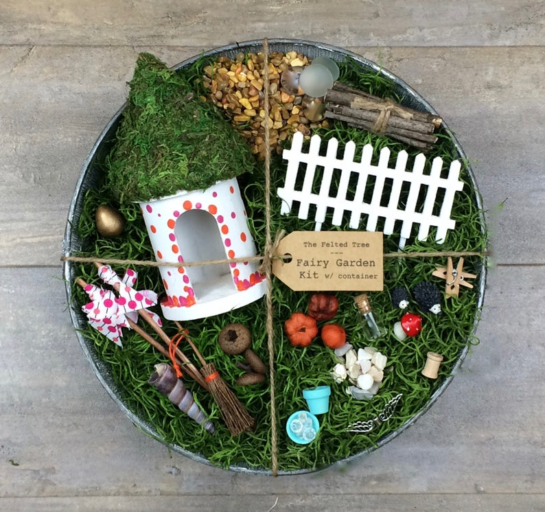 Fairy garden kit with container DIY