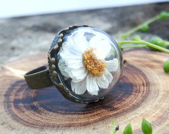 Real Flower ring, Daisy Ring, Botanical Jewellery, Nature Ring, Glass Globe Jewellery, Daisy Jewellery,  Nature Lover Gift, Bohemian Ring