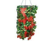 Vertical Garden Hanging Planter 7 Hole Bag for Strawberry Bare Root Plants