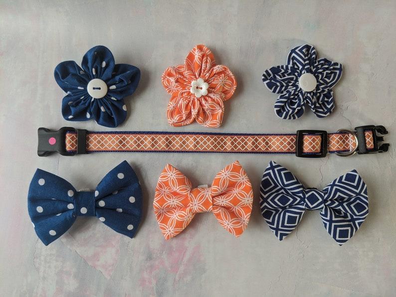 Dog Small Collar 34 wide adjustable length Orange on Blue
