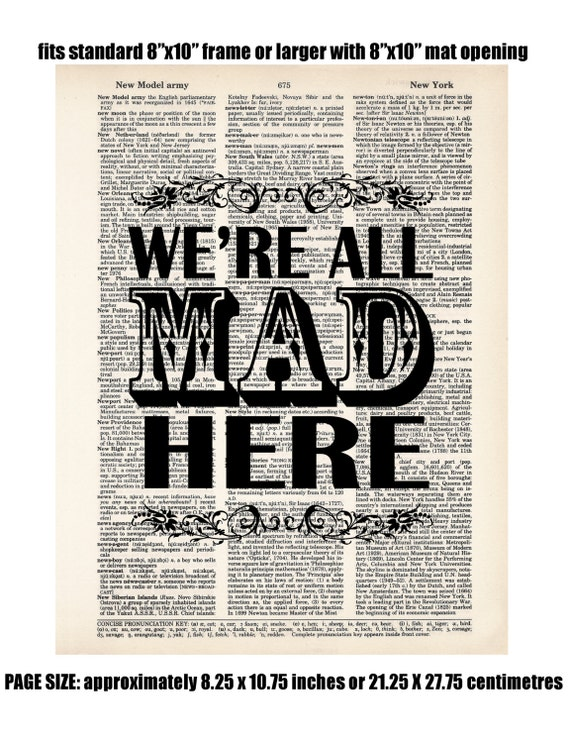 Alice In Wonderland Quote We're All Mad Here You're Entirely Bonkers I Knew Who I was This Morning Sometimes I've Believed VALUE
