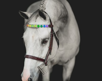 READY TO SHIP Proud Polo Finish Browband