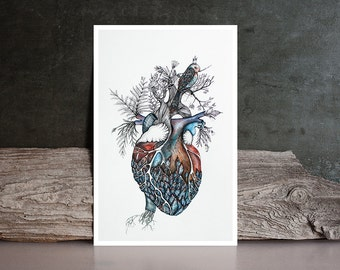 Watercolor Giclee' PRINT Original Painting by Nora - heart / valentine /  bird / feather flora - Fine Art  drawing / home decor / gift idea
