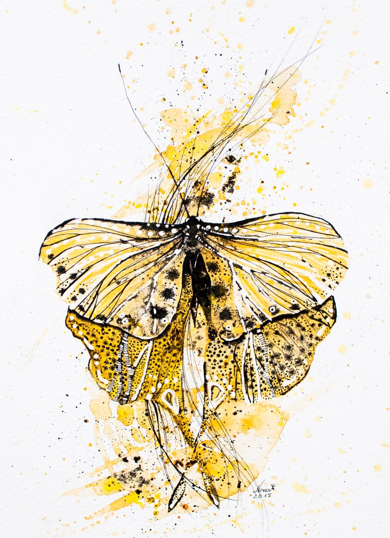 Yellow  butterfly Original Watercolor ink Painting  moth  / image 0