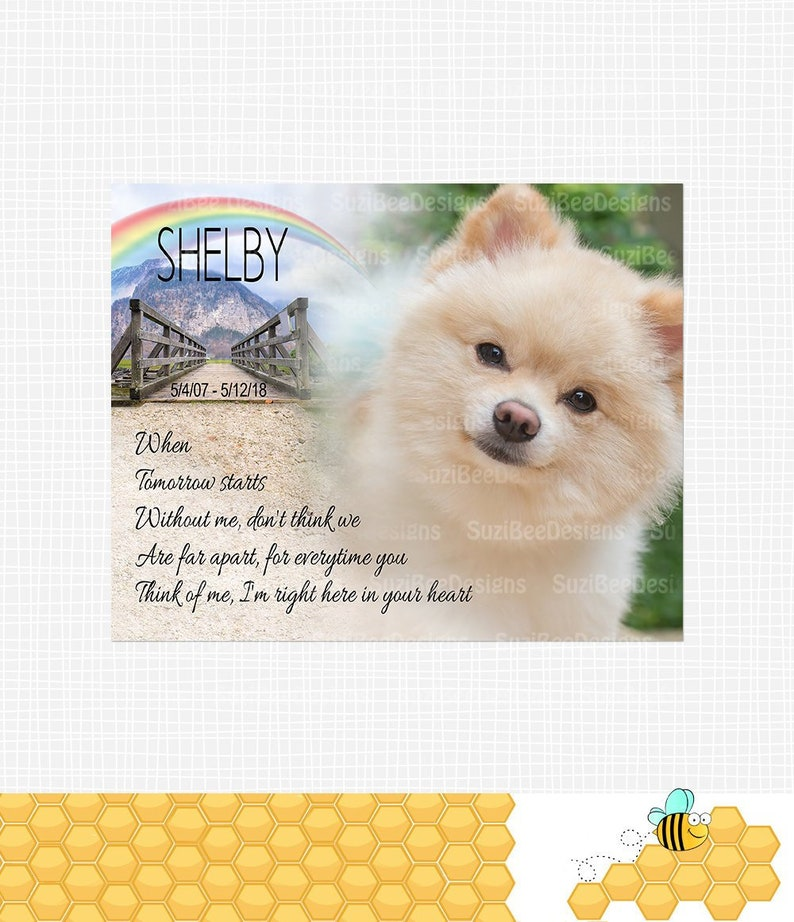 photograph about When Tomorrow Starts Without Me Printable identify Canine Remembrance - Puppy Memorial, Dog Decline - Puppy Keepsake, Rainbow Bridge - Printable