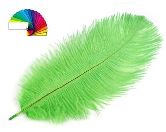 Ostrich Feather length 19-25 cm