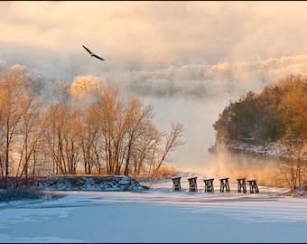 Nature Photography - Hoar Frost and Eagle, Eureka Springs, Arkansas, Fine Art, Beaver Bridge, Railroad Trestle