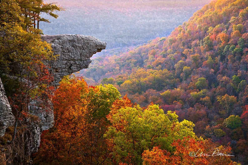 Nature Photography  Buffalo River Fine Art Hawksbill Crag image 0