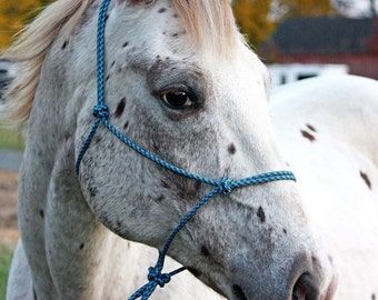 Custom 2 Knot Rope Halter, Custom Horse Halter, Rope Halter, Horse Halter, Horse Tack, Yacht Rope Halter, Custom Tack, Clinician Halter