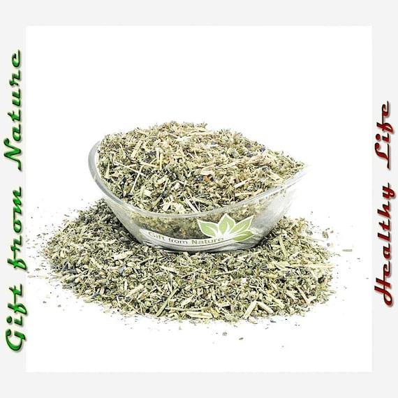 Herb 15 Seeds Viper/'s Bugloss