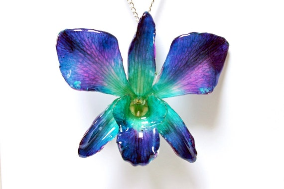Real whole Dendrobium sonia orchid flower necklace in blue and purple