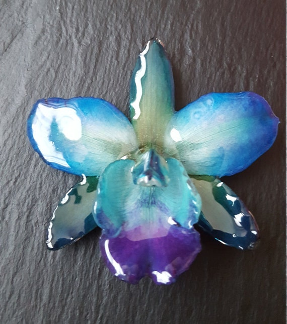 Real orchid Cattleya Sakura flower necklace in blue and green