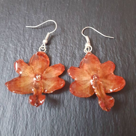 real orchid Rhynchocentrum flower earrings in red