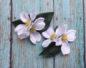 The Perfect Pair; Dogwood Blooms