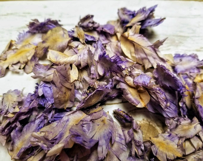4oz Dried Tulip Petals, flowers for wedding toss, shower gifts, soap making, lotions, beauty care, crafts, cosmetics