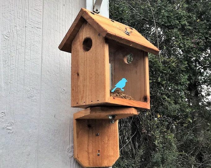 Cedar Blue Bird Feeder