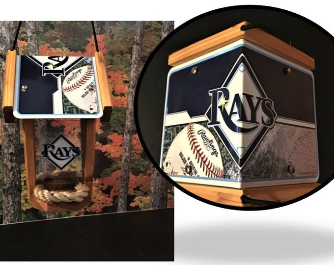 Tampa Bay Rays Two-Sided Cedar Bird Feeder