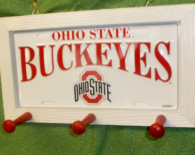 Ohio State License Plate Peg Hanger #2