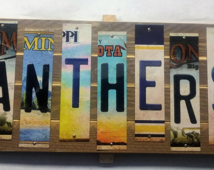 Panthers Cut License Plate Strip Sign