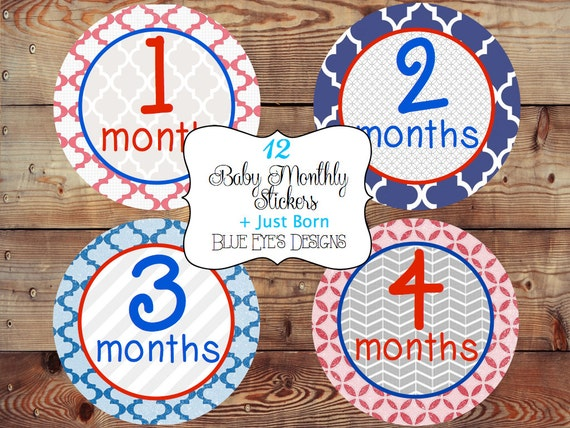Items Similar To Monthly Baby Stickers Monthly Bodysuit