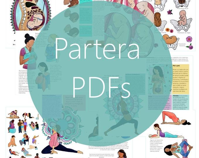 DIGITAL Birthworker Bundle/ Childbirth Education/ Breastfeeding / Postpartum Support/ Lactation/ Doula