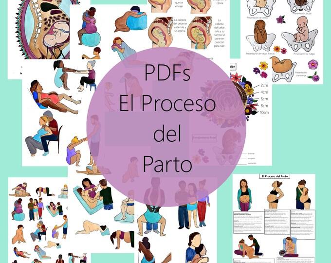 El Proceso del Parto PDFs Grupo 1