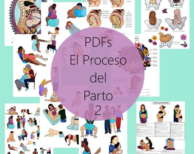 El Proceso del Parto PDFs Grupo 2