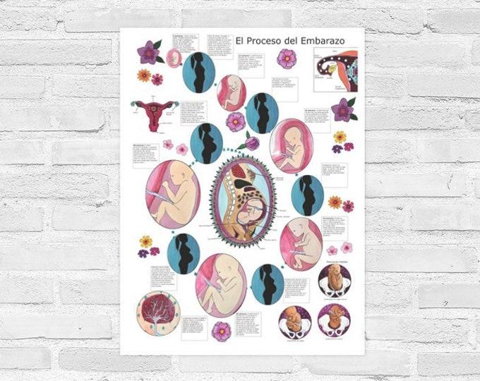 Poster El Embarazo