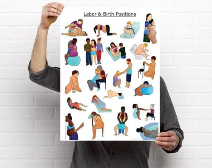 """Labor and Birth Positions Poster-18"""" x 24"""" pregnancy/ birth art/ educational poster/ midwife/ doula/ childbirth/ labor"""