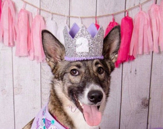 Dog First Birthday Crown || Birthday Dog || Birthday Party Hat || Cake Smash || 1st Birthday || Birthday Crown || Pet Birthday