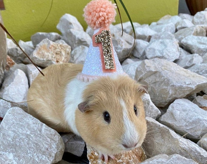 Mini Party Hat | Puppy Party Hat | Birthday Hat | First Birthday Hat | 2nd Birthday Hat | Peach and Gold Birthday Hat | Gold Birthday Hat