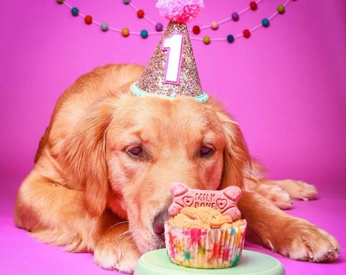 Dog Birthday Hat| Pet Party Hat | Puppy Birthday | First Birthday | Puppy first Birthday | Birthday Party Decor ,Birthday