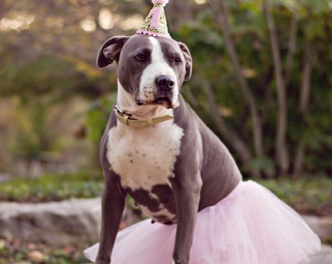 Dog Birthday Party Hat | Pet Birthday | Puppy Cake Smash | Puppy 1st Birthday | Dog Birthday | Ready to Ship