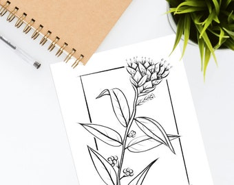 Printable Floral Coloring Page For Adults