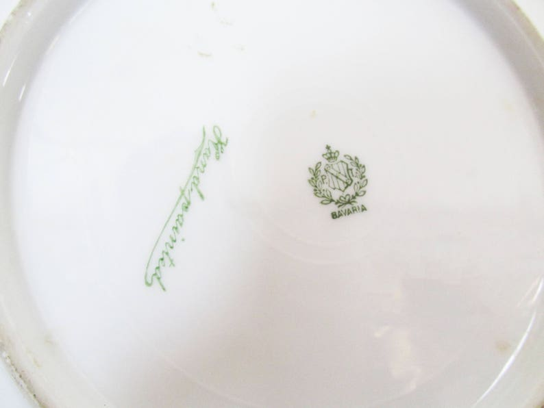 PT Tirschenreuth Bavaria Hand Painted Floral Violets Gold Signed Fenice  Plates Pair