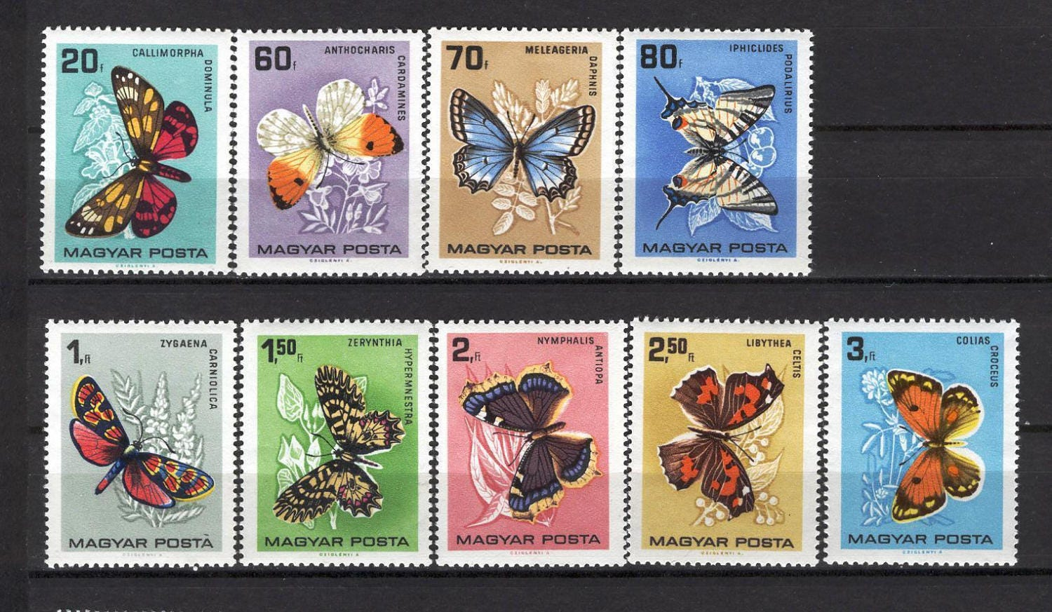 Vintage butterfly stamps from hungary 1966 postage for etsy zoom m4hsunfo