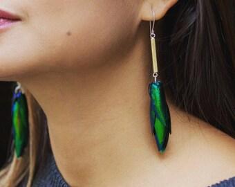 Beetlewing Tassel Bar Earrings. Elytra Jewelry, Avante Garde Earrings, Beetle Earrings, Insect Jewelry, Modern Jewelry, Fantasy, Cosplay