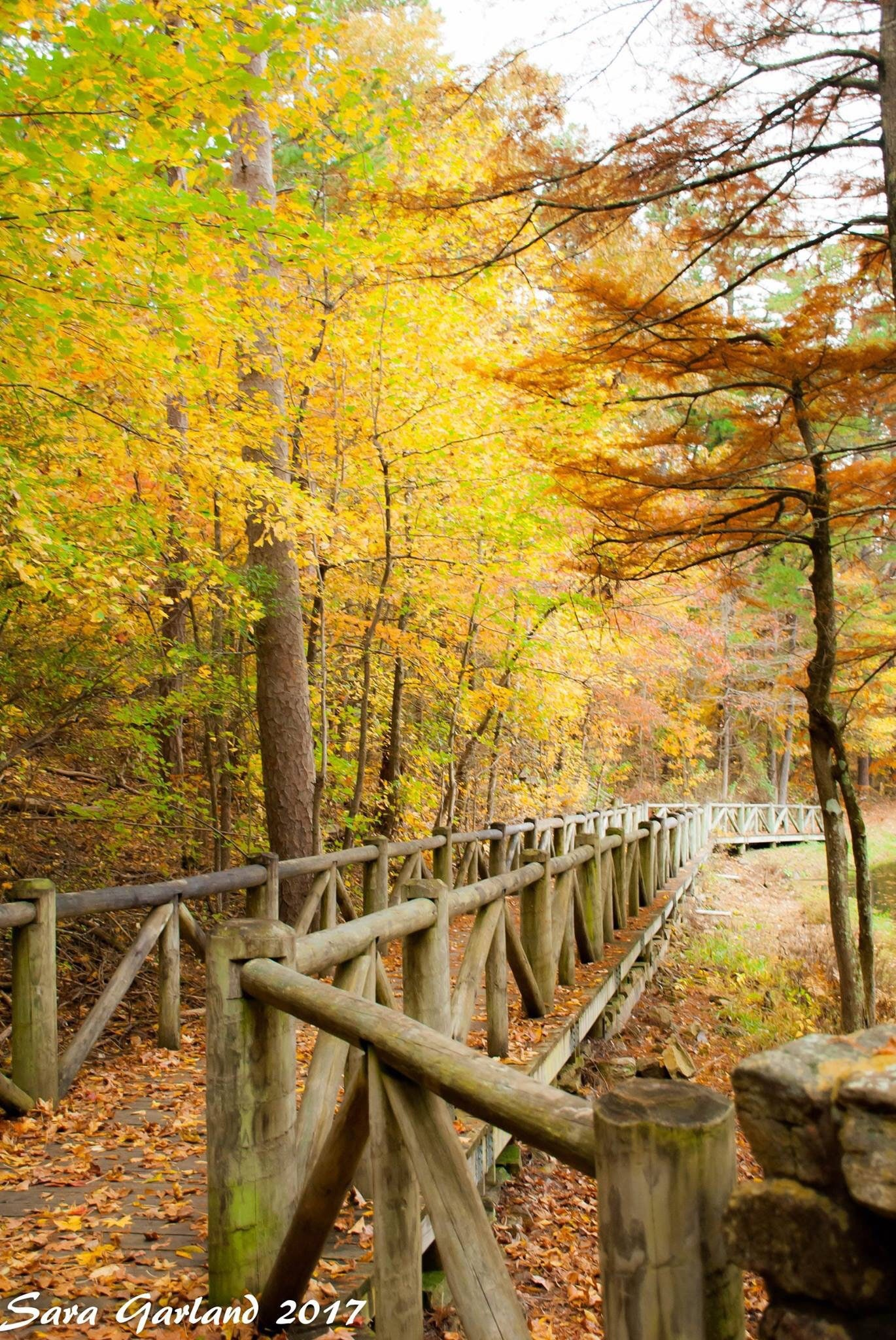 Landscape Photography Color Photography Fall Autumn   Etsy