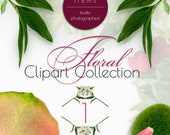 Floral Photo Clipart Vol. 1 PNG PSD Authentic Top View Scene Design