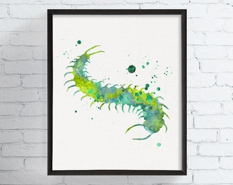 Watercolor Centipede Print, Centipede Art, Centipede Illustration, Zoology, Insect Art, Insect Print, Millipede, Kids Room, Childrens Room