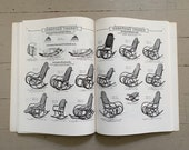 vintage Thonet bentwood chair book Thonet Bentwood Other Furniture 1904 Illustrated catalogue vintage Thonet chair antique Thonet chair