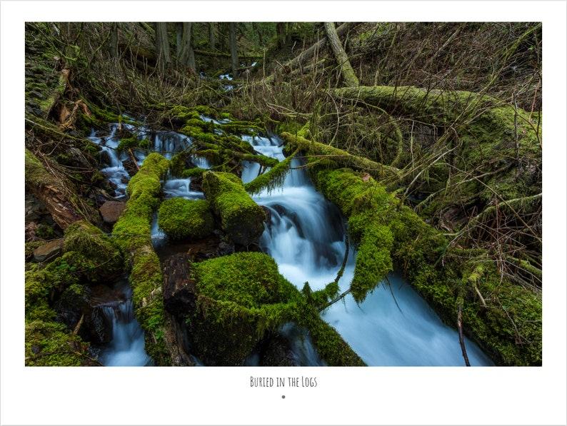 Oregon Photography Book, eBook, Digital Copy, Landscape Photography, Ocean,  Nature, Rivers, Mountains, Waterfalls, Pacific Northwest, PDF