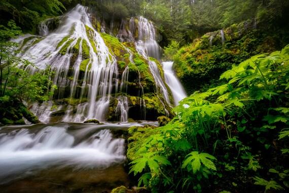panther creek falls photograph waterfall print wall decor etsy etsy