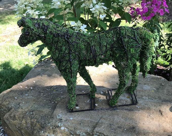 Equestrian Horse  Topiary Decor Animal Topiary Sttatue