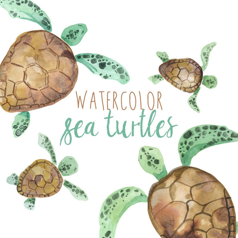 Watercolor Sea Turtles Illustration Sea Turtle Clipart Etsy