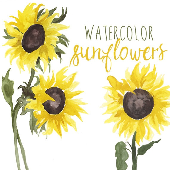 Watercolor sunflower clip art floral summer clipart etsy image 0 mightylinksfo