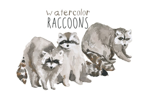 Watercolor Painted Raccoons Clipart Raccoon Commercial use digital scrapbooking Hipster Clip Art instant download