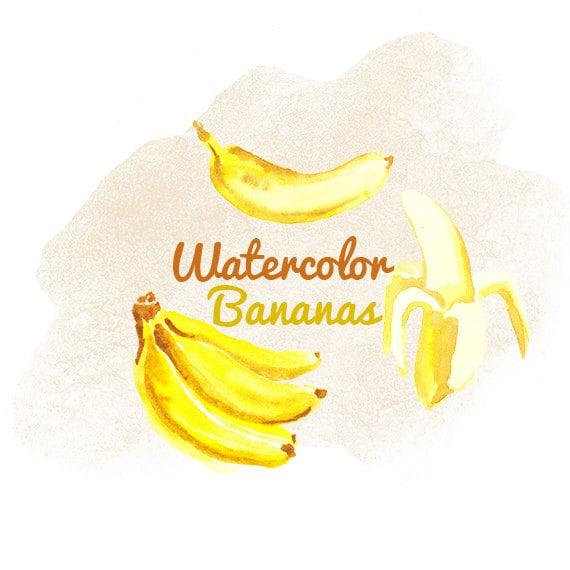 Watercolor Fruits Bananas Fruit Banana Clipart Instant Etsy